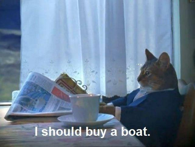 "Cat reading a newspaper and drinking coffee captioned ""I should buy a boat"""